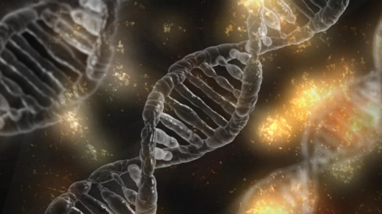 不朽的勝利<第五節:12股DNA螺旋>