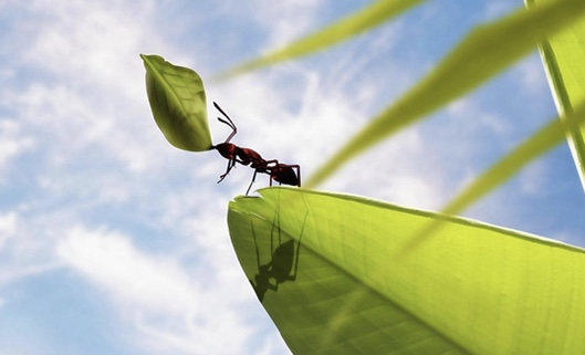 Ant Civilization<自我介紹-我們來自八維以上,喜歡和平、熱愛創造></noscript>