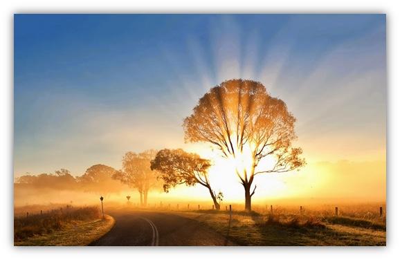 照亮別人更照亮自己,在豐盛的源頭裡發光送愛