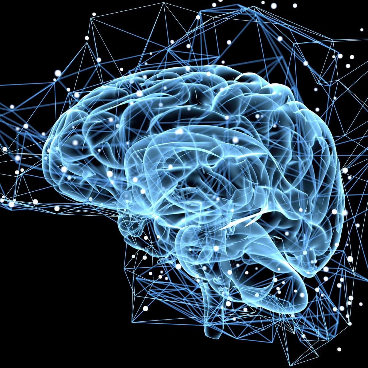 天啟後大腦會像0~6歲小朋友一樣大腦神經元不斷地生長連結