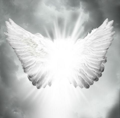 乘著能量跟信念平衡的翅膀,翱翔在無限時空的宇宙中