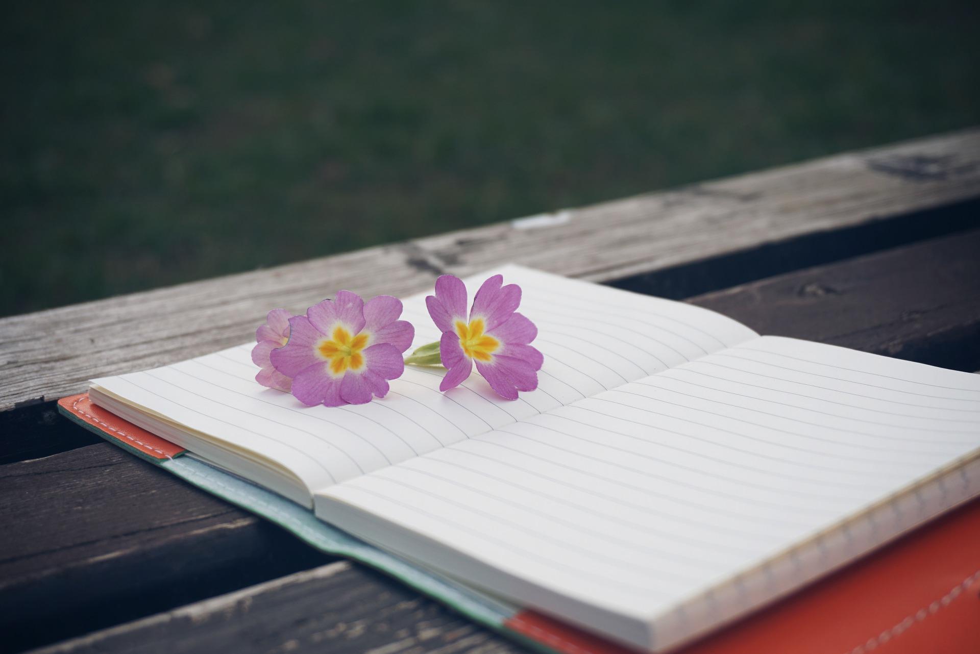天啟的課程中,透過記錄靈性筆記提升自我覺察能力!