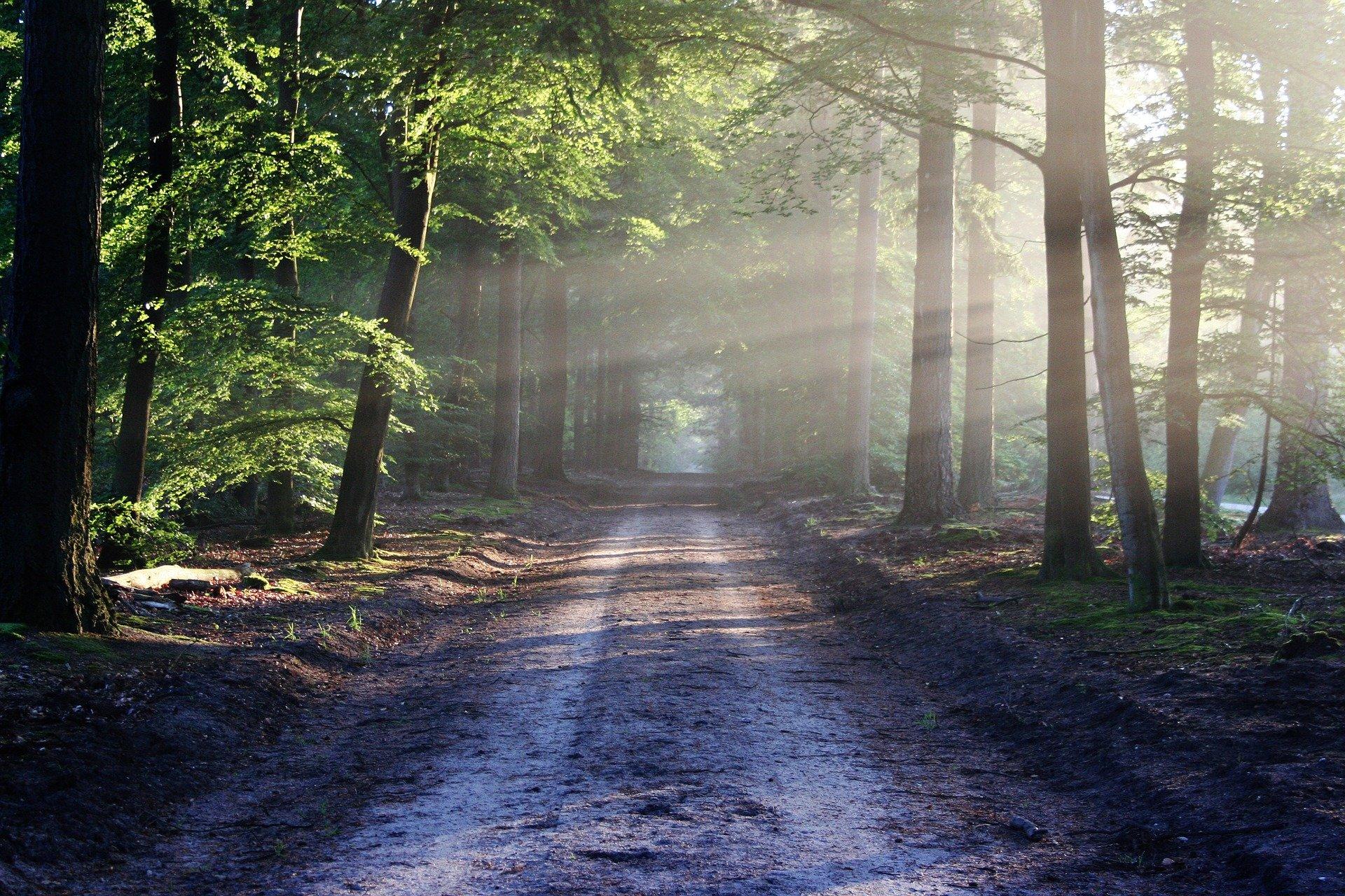 「回家」的路途,就是拿回靈魂力量之路!