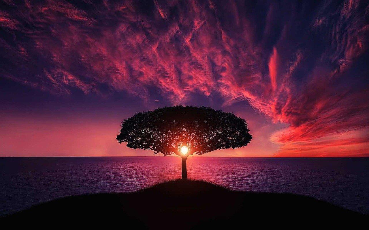 打開宇宙能量通道,找到通往自己內心和靈魂的通道!