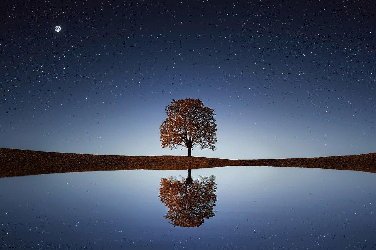 內在靈魂的渴望,是突破帷幕到達五次元地球!